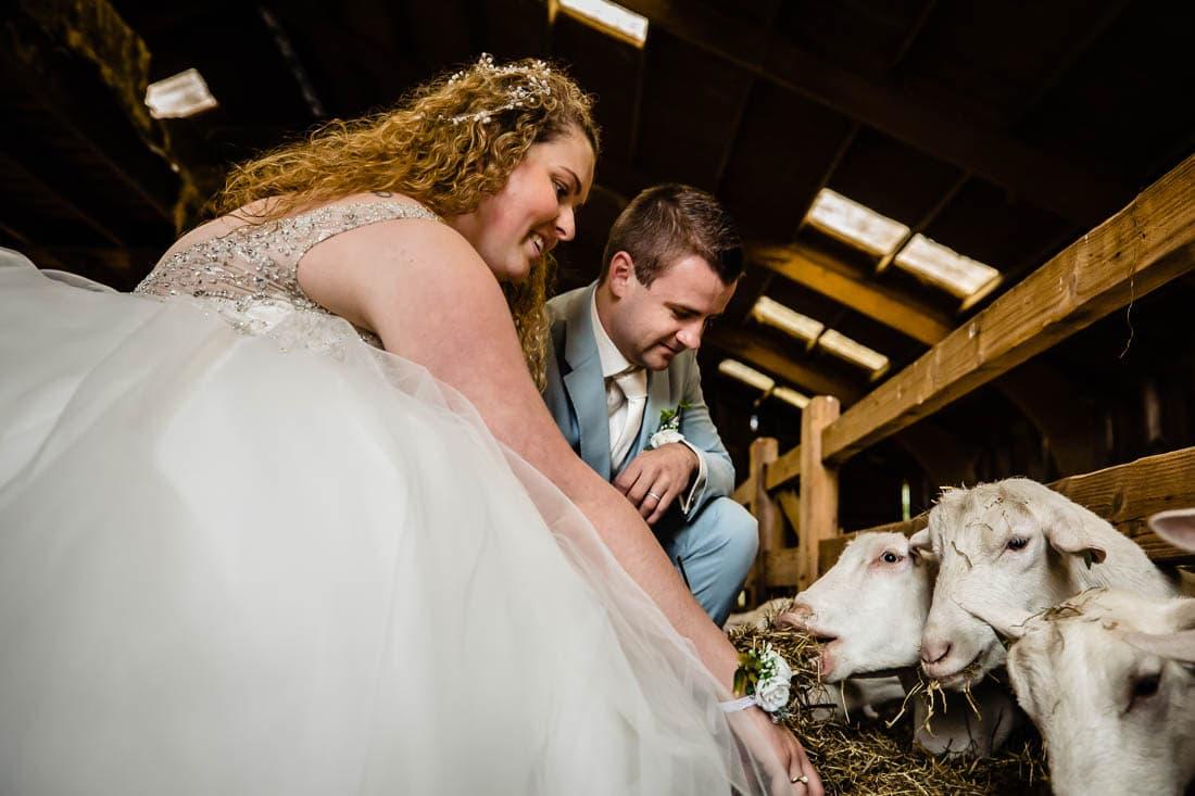 trouwen bij het wapen van zoetermeer foto (270 of 310)