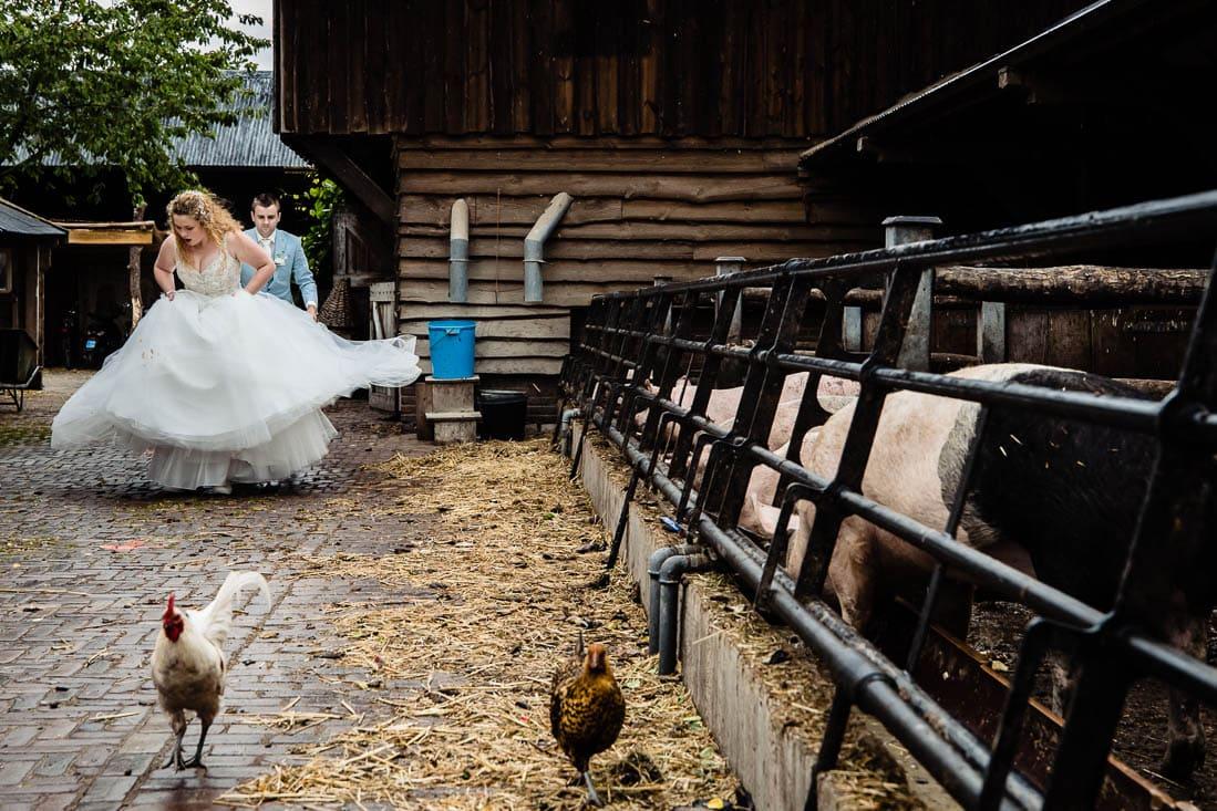 trouwen bij het wapen van zoetermeer foto (287 of 310)