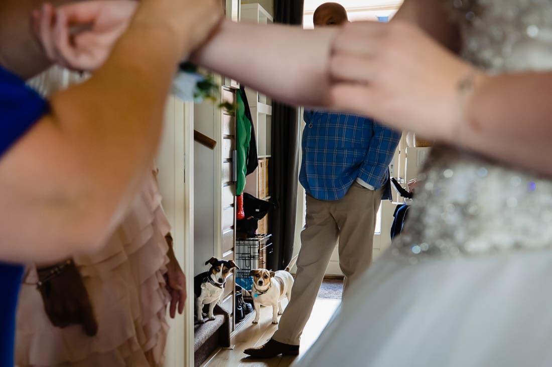 trouwen bij het wapen van zoetermeer foto (56 of 310)